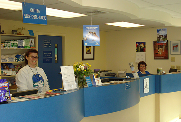 Reception staff at the front desk
