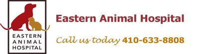 Eastern Animal Hospital