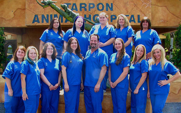 Veterinary Staff