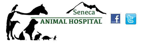 Seneca Animal Hospital
