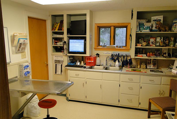 Lake County Veterinary Clinic Virtual Tour