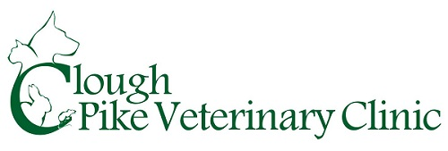 Clough Pike Veterinary Clinic