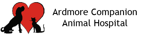 Ardmore Companion Animal Hospital logo