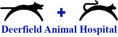 Deerfield Animal Hospital logo