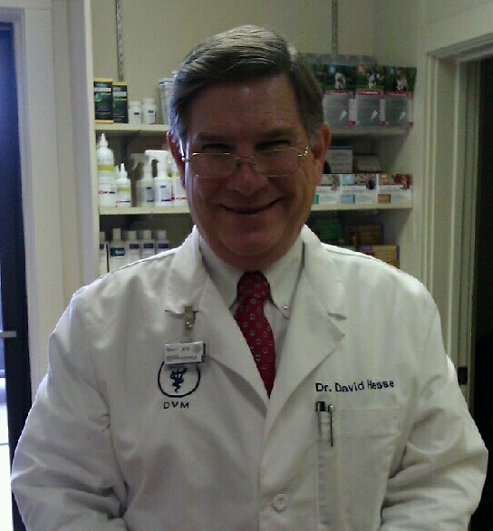 Dr. David P Hesse, D.V.M, Owner
