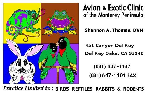 Avian & Exotic Clinic of the Monterey Peninsula, Shannon A. Thomas, DVM - Practice limited to Birds, Reptiles, Rabbits, and Rodents