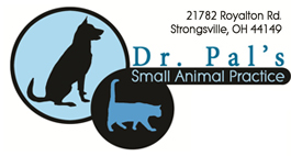 Dr Pal's Small Animal Practice Boarding & Grooming