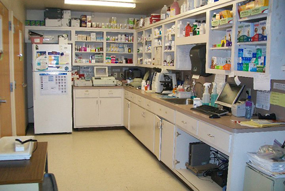 Small Animal Pharmacy