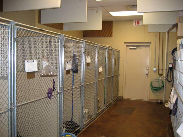 Concord Nc Hospital Emergency Room