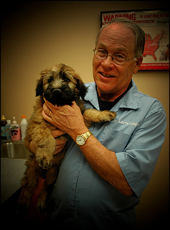 Dr. Larry doing a wellness checkup on a dog