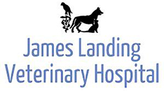 James Landing Veterinary Hospital logo