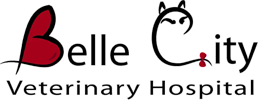 Belle City Veterinary Hospital