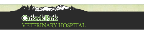 Carkeek Park Veterinary Hospital