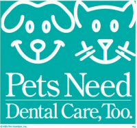 Pets Needs Dental Care, Too