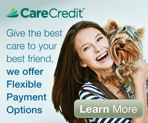 Care Credit - We offer flexible payment options.