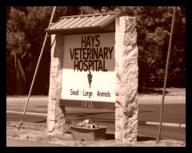 Hays Veteriarny Hospital's Sign