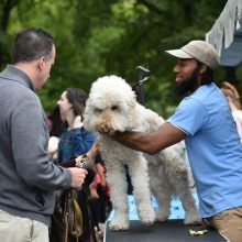 "Photo Release: Central Park Conservancy Celebrates 17th Annual ""My Dog Loves Central Park Fair"""