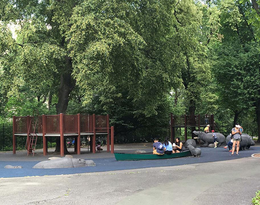 Safari Playground