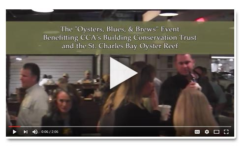 oysers_blues_brews_video