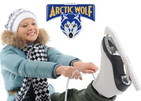 Arctic Wolf Ice Center Deal Image