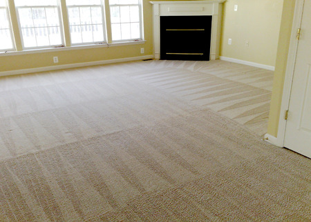 Guarantee Carpet Cleaning and Dye Company Deal Image