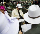 2014-kentucky-derby-clubhouse-pink-seating-4