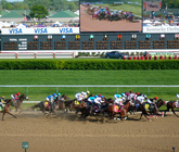 2014-kentucky-derby-turf-club-view