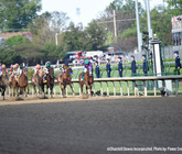 2014-kentucky-derby-clubhouse-pink-view