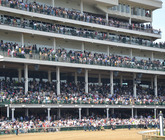 2014-kentucky-derby-clubhouse-purple-derby-experiences-seating-area