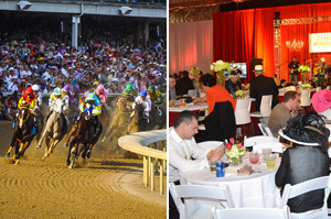 Derby-experiences-clubhouse-packages-2