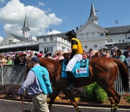 Derby-experiences-paddock-tour-churchill-downs-inside-the-paddock-parade-of-horses-view