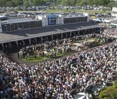 2014-kentucky-derby-trophy-room-paddock