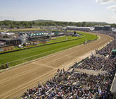 2014-kentucky-derby-derby-room-view-1