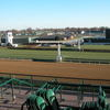 2014-kentucky-derby-clubhouse-gold-view-3