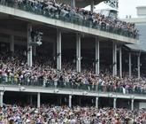 2014-kentucky-derby-clubhouse-purple-seating-1
