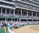 2014-kentucky-derby-clubhouse-brown-view