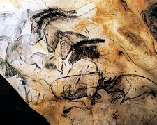 Les chevaux de la Grotte de Chauvet