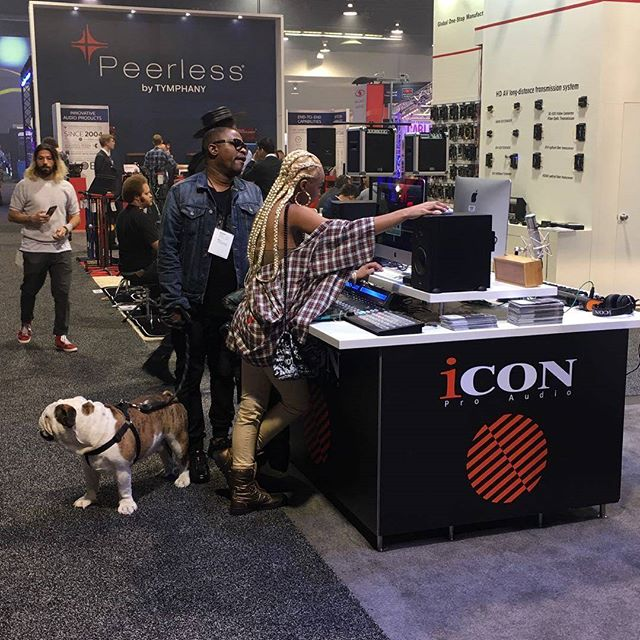 Even your dog loves @iconproaudio
