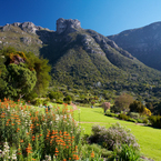 R_fynbos_walk_protea_garden__may_autumn__adh_resize_b_1