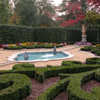 French_parterre_in_the_fall_with_mums_b_1