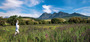 Winelands1_a_4