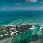 Parrot_cay_1_b_1