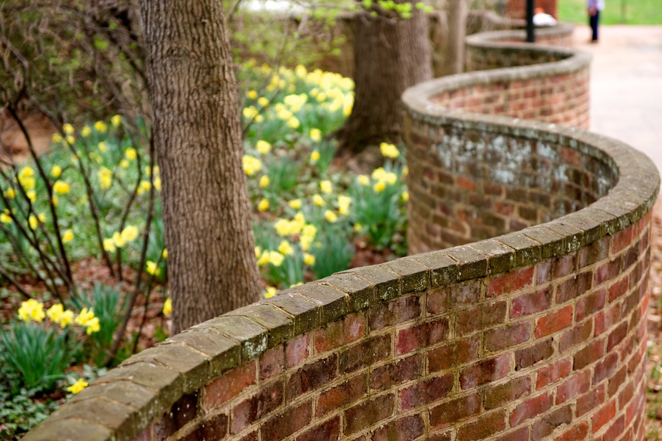 serpentine walls at the University of Virginia