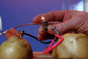 Potato battery
