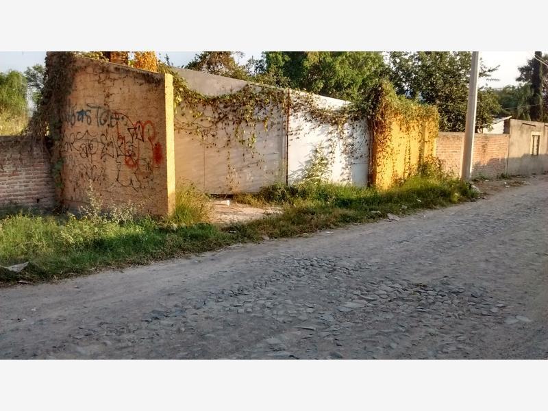 Terreno en Renta en Buenavista, Tlajomulco de Zúñiga