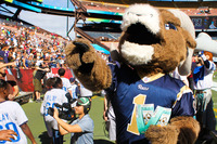 Nfl-on-location-pro-bowl-hawaii-ohana-day-rams-mascot