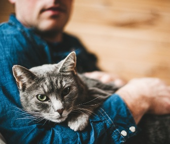 man and gray cat