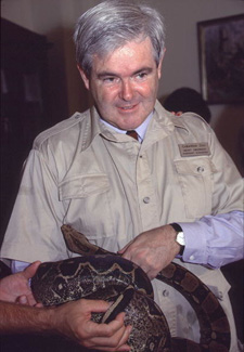 Newt Gingrich holding a snake