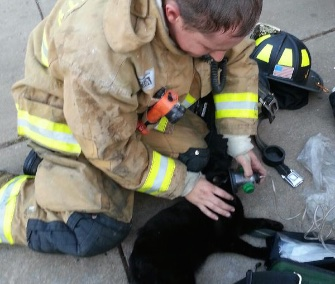 Oklahoma City Fire Recruit Jeremy Dunshie revives a cat found in an apartment fire.