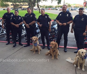 Some of the Comfort Dogs who traveled to Dallas spent time with police officers Monday night.